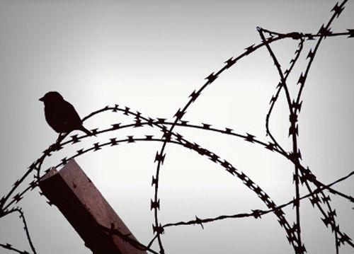 Σεμινάριο: η εφαρμογή των εναλλακτικών μέτρων της κράτησης στην Ελλάδα