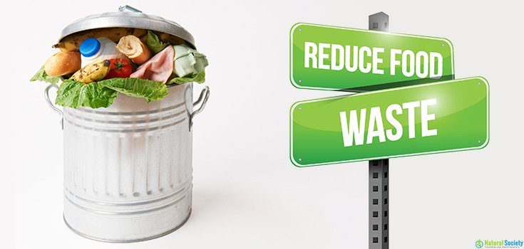 Συμπεράσματα του Συμβουλίου της Ευρώπης για τη σπατάλη τροφίμων στην ΕΕ