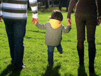 shared parenting el