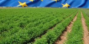 Εκπαιδευτικό Πρόγραμμα Ερευνητών: Ευρωπαϊκή Αγροτική Διακυβέρνηση